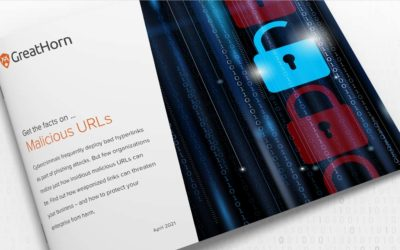 [eBook] Malicious URLs: What You Need to Know